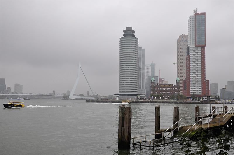 Hochhäuser am Hafenbecken von Rotterdam